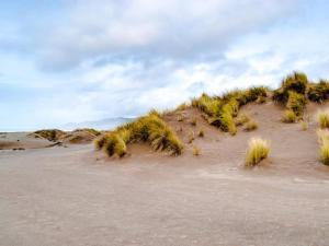 Mendocino Dunes - Dune Flower, Dovolenkové domy  Fort Bragg - big - 13