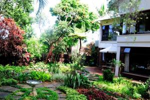 Oliveroom, Penzióny  Durban - big - 24