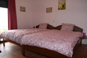Finca Ranchiles, Apartmanok  Montecorto - big - 29