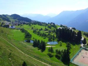 Apartment Amici 1. Stock Allegra, Apartmány  Riederalp - big - 57