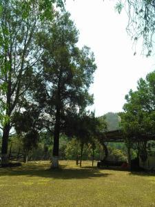 Casa de Campo Tipo California, Prázdninové domy  Teopisca - big - 17