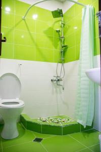 Eco-House, Гостевые дома  Тбилиси - big - 13
