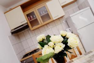 Darijan Apartments, Ferienwohnungen  Marina - big - 28
