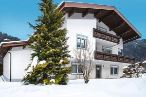 Ferienwohnung Gortipohl 190W, Apartmány  Sankt Gallenkirch - big - 1