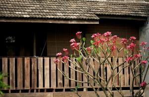 The Puka Boutique Resort, Üdülőtelepek  Szankampheng - big - 68