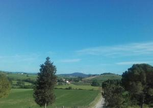 Agriturismo da Remo, Bauernhöfe  Magliano in Toscana - big - 28