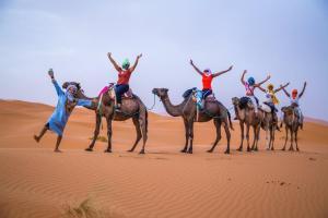 Riad Desert Camel, Hotels  Merzouga - big - 23