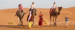 Riad Desert Camel, Hotels  Merzouga - big - 24