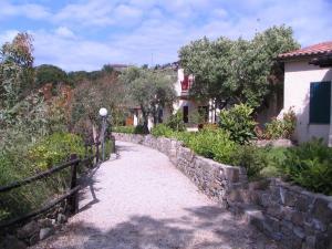 Caleo Alto - Acciaroli - AbcAlberghi.com