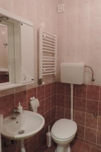 Sunflower Apartment, Appartamenti  Novi Sad - big - 7