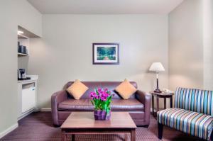 University Park Inn & Suites, Hotels  Davis - big - 9