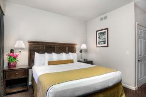 University Park Inn & Suites, Hotels  Davis - big - 8