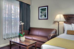 University Park Inn & Suites, Hotels  Davis - big - 4