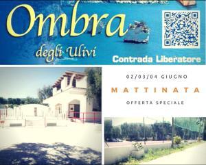 Ombra degli Ulivi - AbcAlberghi.com
