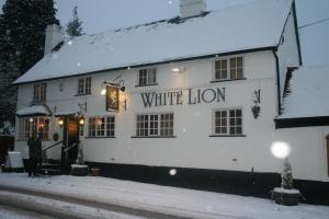 The White Lion Inn, Inns  Hampton in Arden - big - 36