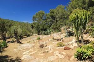 Casa Vilda, Vily  Sant Mateu d'Albarca - big - 39