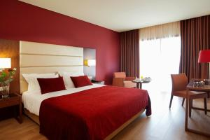 Palace Hotel e SPA - Termas de Sao Miguel, Hotely  Fornos de Algodres - big - 3