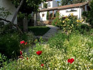 Garden House, Ferienhäuser  Selcuk - big - 35