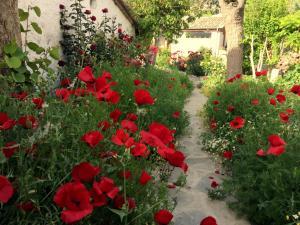 Garden House, Ferienhäuser  Selcuk - big - 36