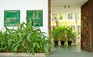 Plantation (2 of 57)