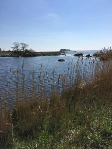 Havsstugan, Case vacanze  Pukavik - big - 14