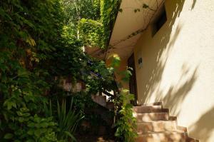 Villa Lily of Budva, Villas  Budva - big - 3
