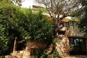 Villa Lily of Budva, Villas  Budva - big - 54