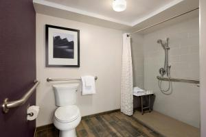 King Suite with Roll-in Shower - Disability Access - Non-Smoking