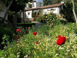 Garden House, Ferienhäuser  Selcuk - big - 40