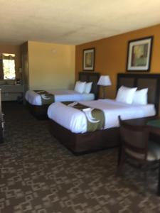 Quality Inn Troy, Hotel  Troy - big - 9