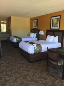Quality Inn Troy, Hotel  Troy - big - 10