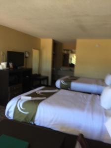 Quality Inn Troy, Hotel  Troy - big - 7