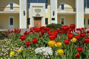 Отель Узкое