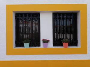 Casa das Hortensias - Vila Nova de Milfontes, Проживание в семье  Вила-Нова-де-Мильфонт - big - 37
