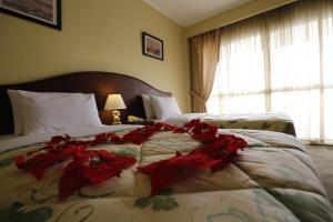 Horizon Shahrazad Hotel, Hotely  Káhira - big - 26