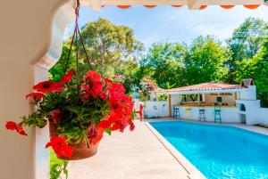 Calypso Cozy - Adult Only, Hotels  Dalyan - big - 10