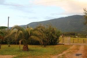 U Rafa Guest House, Guest houses  Pizunda - big - 58