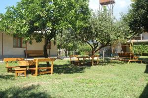 U Rafa Guest House, Guest houses  Pizunda - big - 57