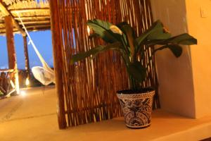 Tierra Mia Boutique Hotel, Hotely  Holbox Island - big - 50