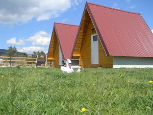 Cottage Borje