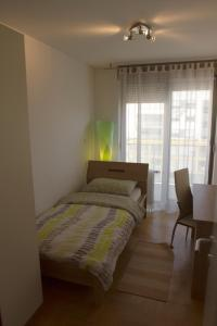 Apartment Exclusive, Appartamenti  Zagabria - big - 15