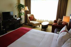 Holiday Inn Chengdu Century City West, Отели  Чэнду - big - 5