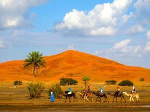 Riad Desert Camel, Hotels  Merzouga - big - 64