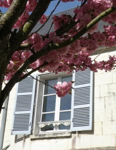 La Closerie Saint Jacques, Bed & Breakfasts  Loches - big - 17