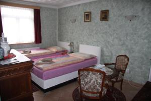 Villa Anastazis - Penzion Eden, Guest houses  Karlovy Vary - big - 40