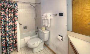 Deluxe One Bedroom with Ocean View - 301
