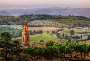 Borgo San Gusmè, Ferienwohnungen  San Gusmè - big - 46