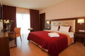 Palace Hotel e SPA - Termas de Sao Miguel, Szállodák  Fornos de Algodres - big - 7