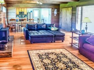 Cleone Bliss, Holiday homes  Fort Bragg - big - 12