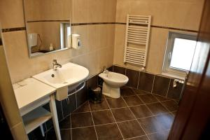 Pensiunea Belanco, Guest houses  Arad - big - 10